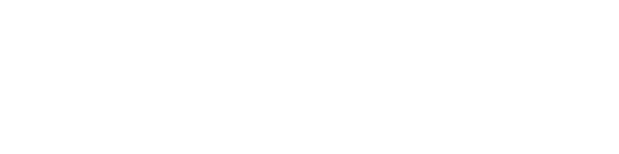 Zigdon Enterprises logo